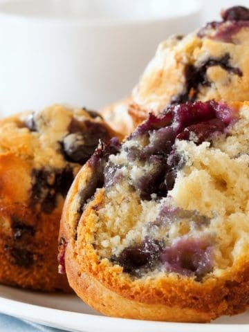 Blueberry muffins on a white plate.